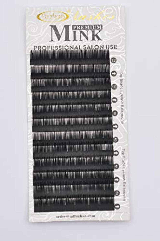 膨らみチャーミング規範まつげエクステ 太さ0.25mm(カール長さ指定) 高級ミンクまつげ 12列シートタイプ ケース入り (0.25 14mm D)