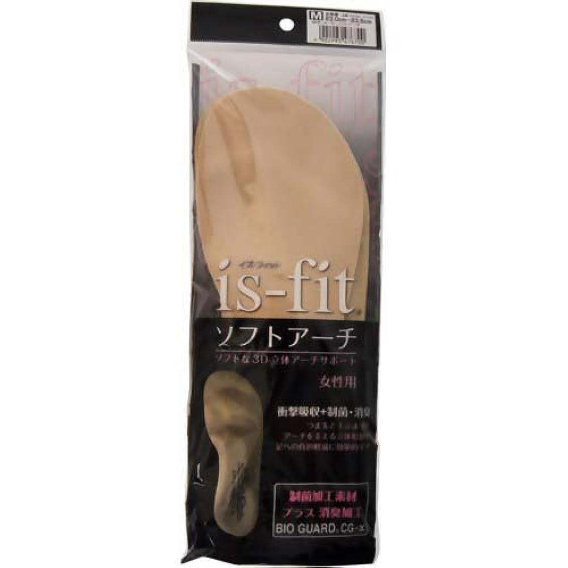アートスクレーパー演じるis-fit(イズフィット) ソフトアーチ 女性用 M(23.0~23.5cm)