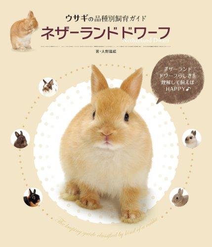ネザーランドドワーフ (ウサギの品種別飼育ガイド)