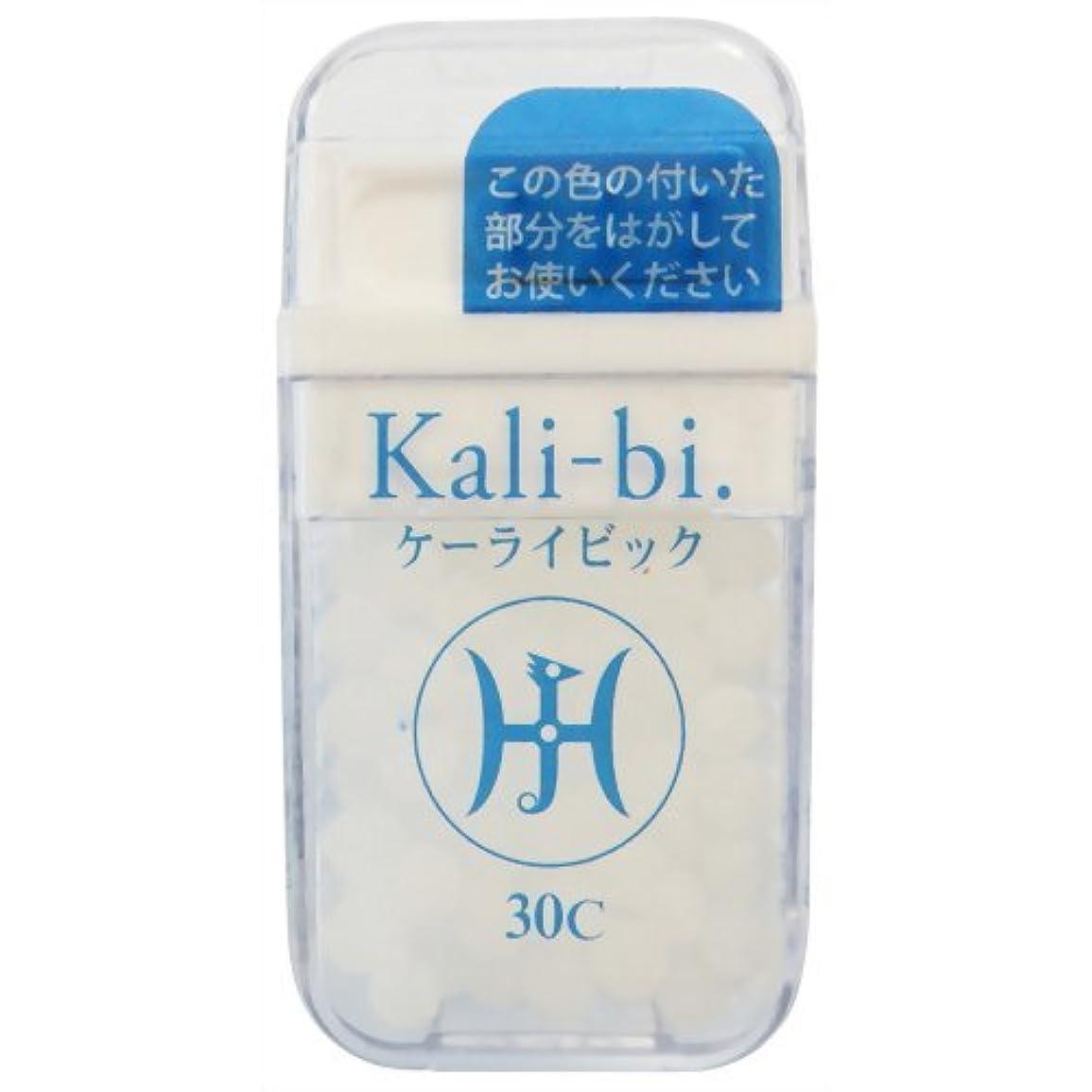 歩道累積ランダムホメオパシージャパンレメディー Kali-bi.  ケーライビック 30C (大ビン)