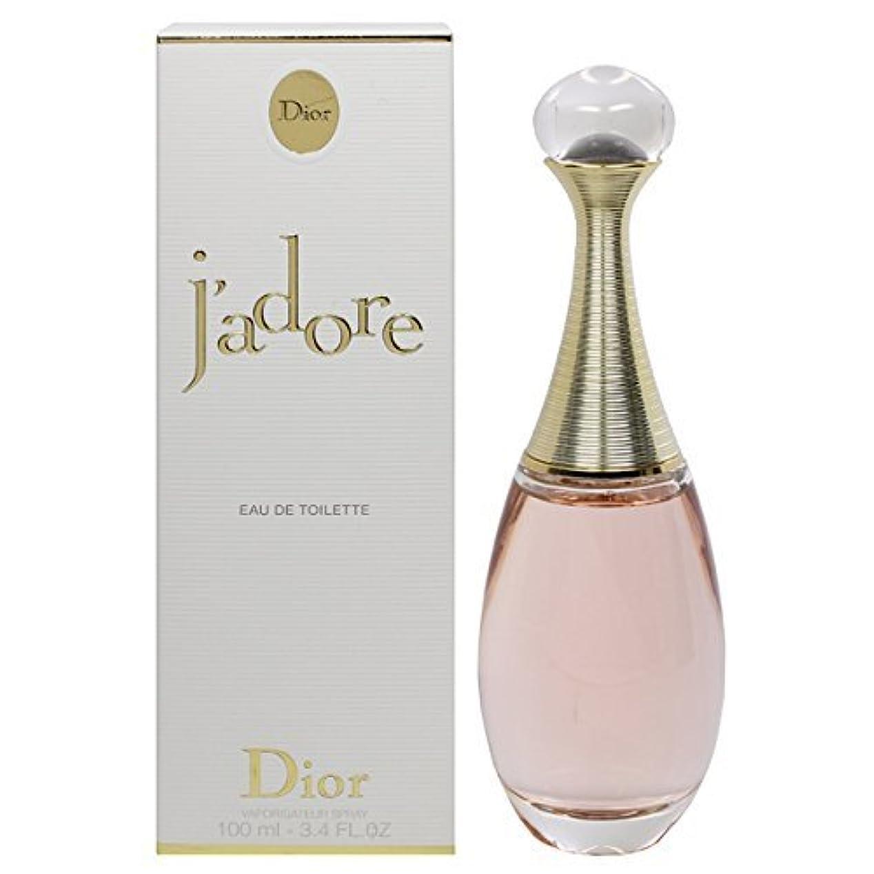 セッティングバドミントン樹木クリスチャン ディオール(Christian Dior) ジャドール オー ルミエール EDT SP 100ml [並行輸入品]