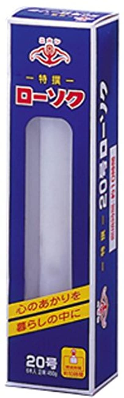 安定ポップ奇跡的なニホンローソク 大20号 450g