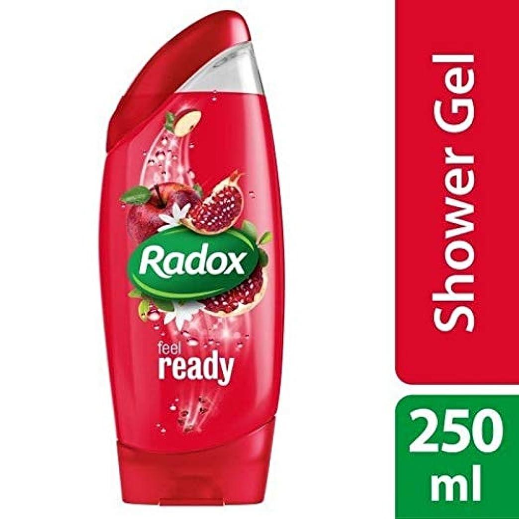 小屋死講義[Radox] Radoxは準備ができてシャワージェル250ミリリットルを感じます - Radox Feel Ready Shower Gel 250ml [並行輸入品]