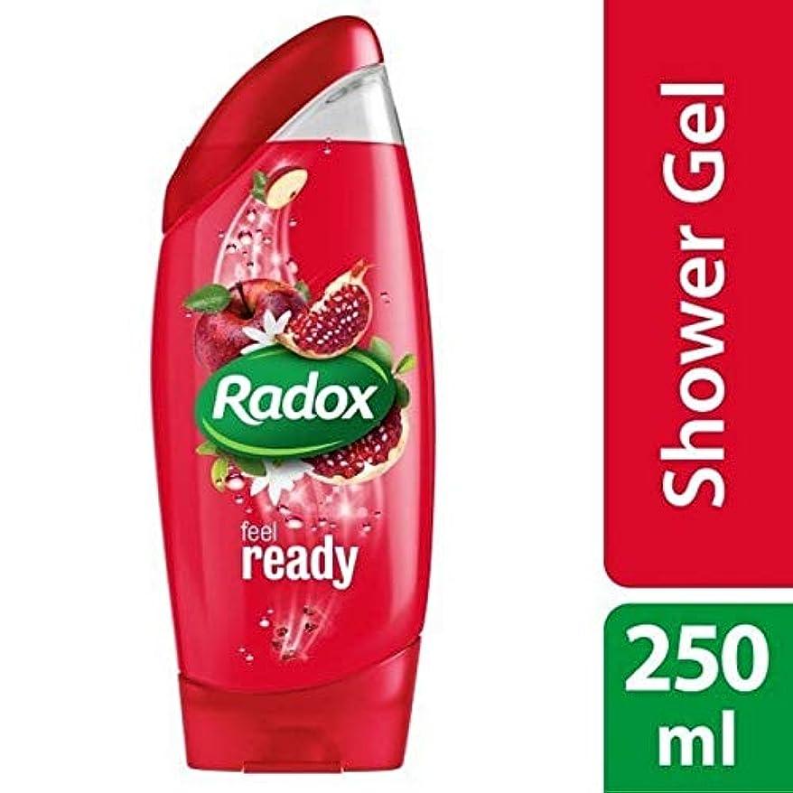 ポスト印象派強要ヘッジ[Radox] Radoxは準備ができてシャワージェル250ミリリットルを感じます - Radox Feel Ready Shower Gel 250ml [並行輸入品]