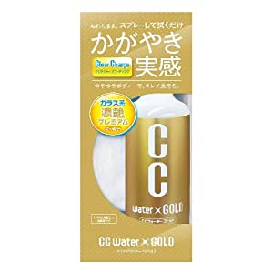 PROSTAFF(プロスタッフ) コーティング剤 CCウォーターゴールド300 S121