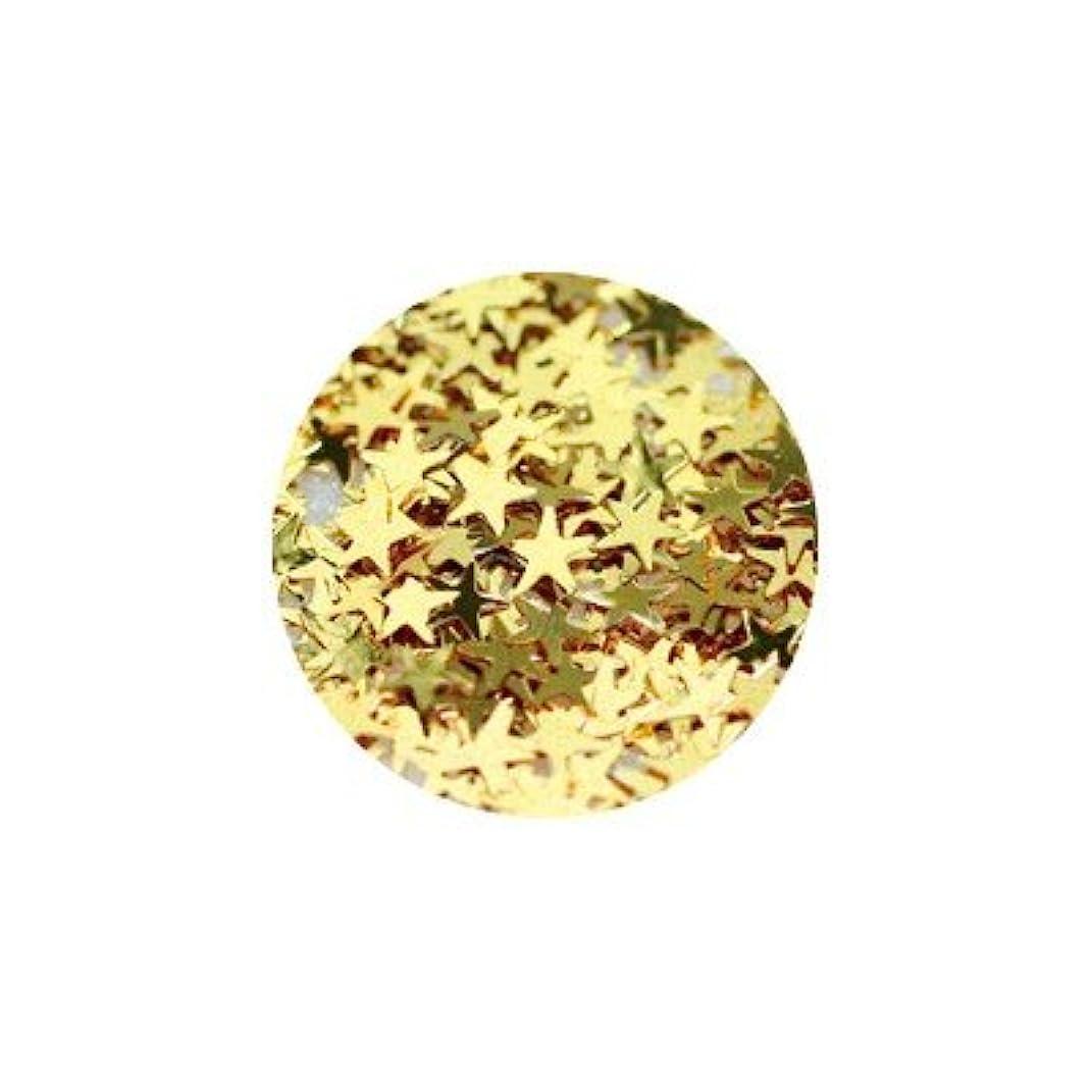 茎病院肌キラキラ ゴールド スター 2.5mm