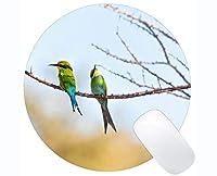 円形のマウスパッドの注文の設計、水鳥動物のアフリカのハチドリの賭博円形のマウスパッド
