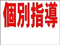 シンプル看板 「個別指導 白窓付(赤)」<スクール・塾・教室> Mサイズ 屋外可(約H60cmxW45cm)