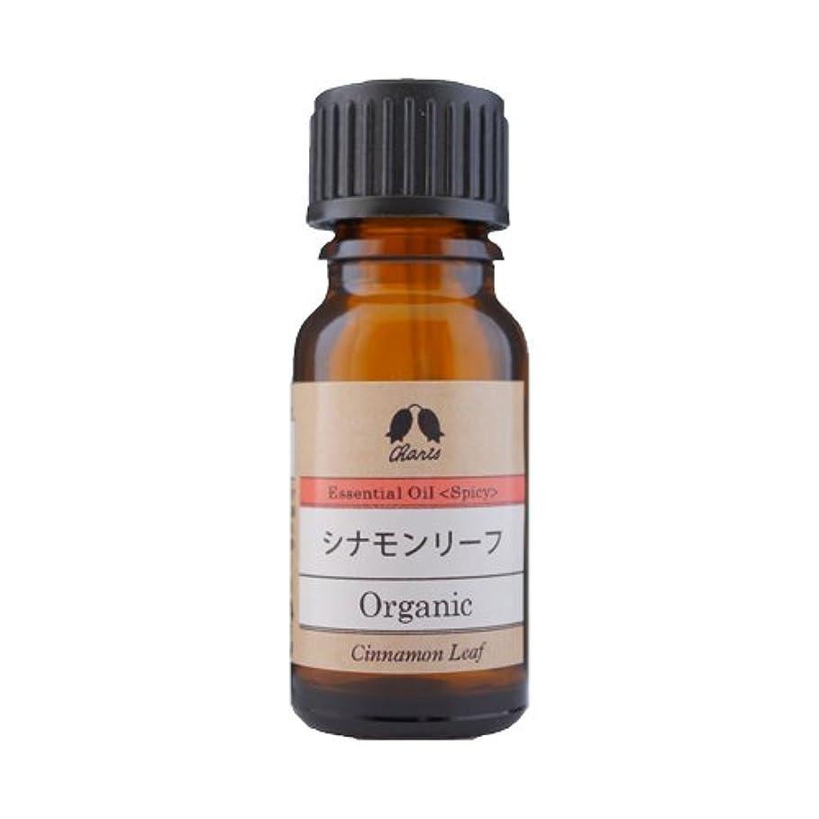 スカルクエンドウ豆カリス シナモン・リーフ オーガニック オイル 10ml
