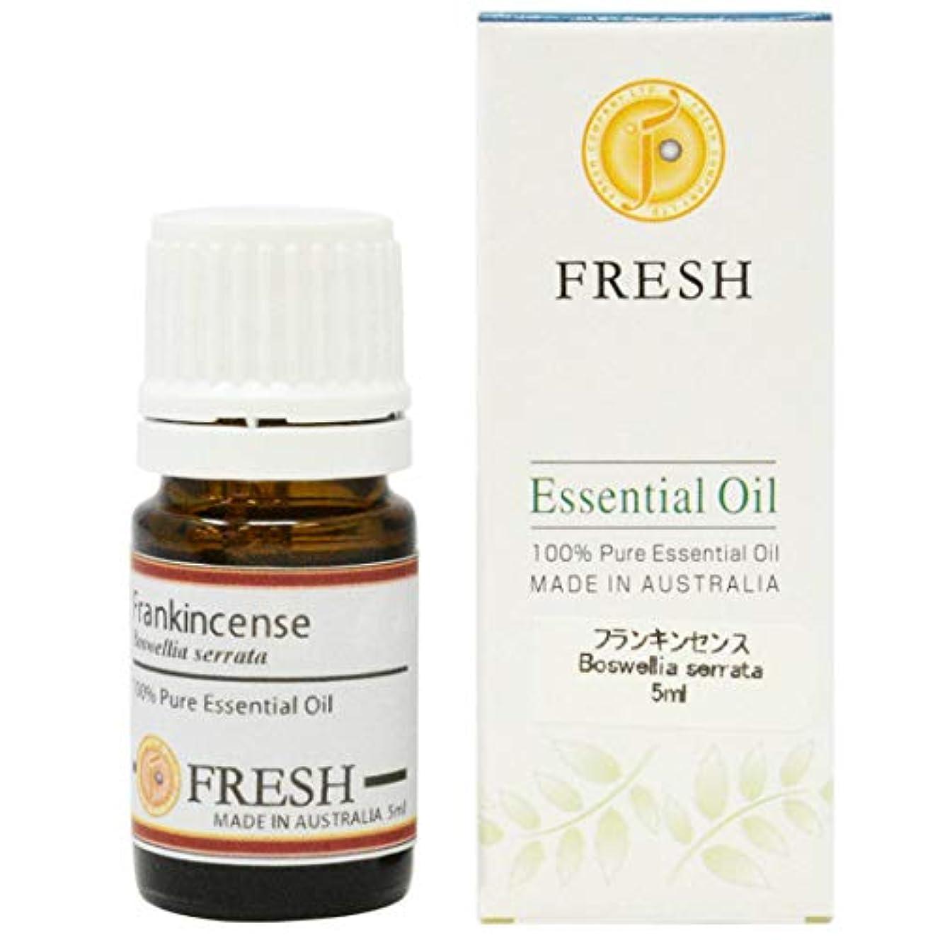 近所の気楽な早いFRESH エッセンシャルオイル フランキンセンス 5ml (FRESH 精油)
