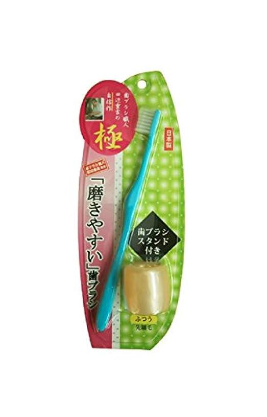スワップつづりアナニバー磨きやすい歯ブラシ極 先細毛 歯ブラシスタンド付 LT-23 ブルー