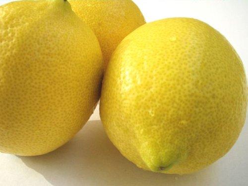 国産レモン 5kg 防腐剤 防かび剤不使用 ノーワックス 瀬戸内レモンの島 岩城島 皮ごと食べられるレモン