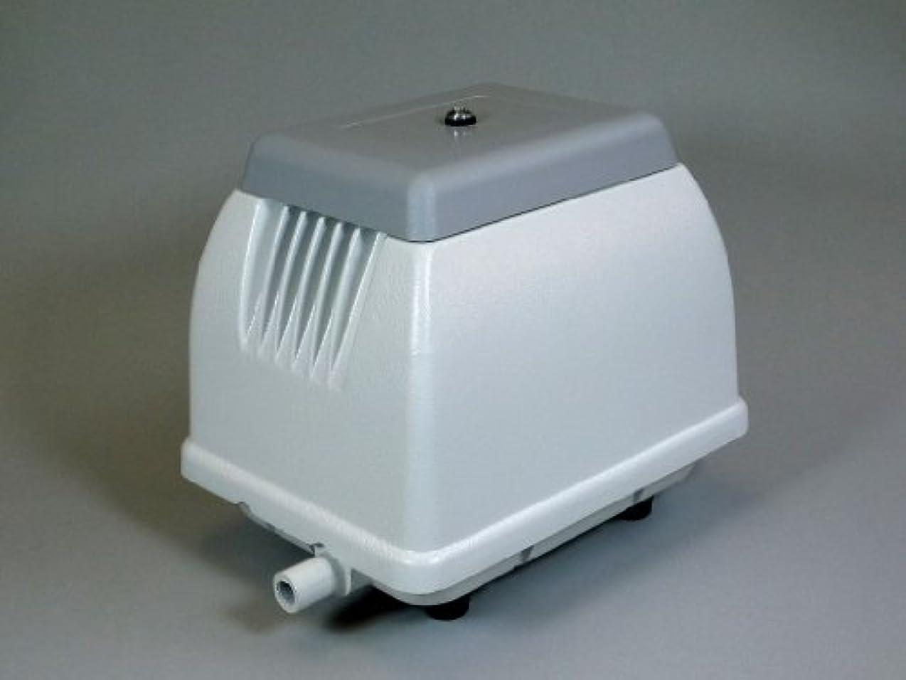 乱雑な生む検出器日本電興(NIHON DENKO) 電磁式エアーポンプ 40L NIP-40L ホワイト