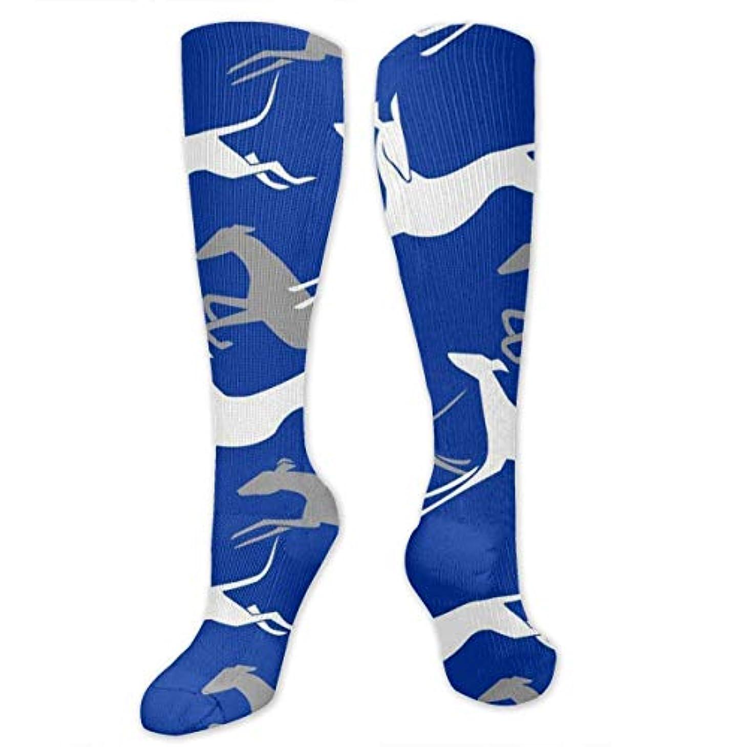 頭サリー持ってる靴下,ストッキング,野生のジョーカー,実際,秋の本質,冬必須,サマーウェア&RBXAA Jumping Greyhounds Blue Socks Women's Winter Cotton Long Tube Socks...