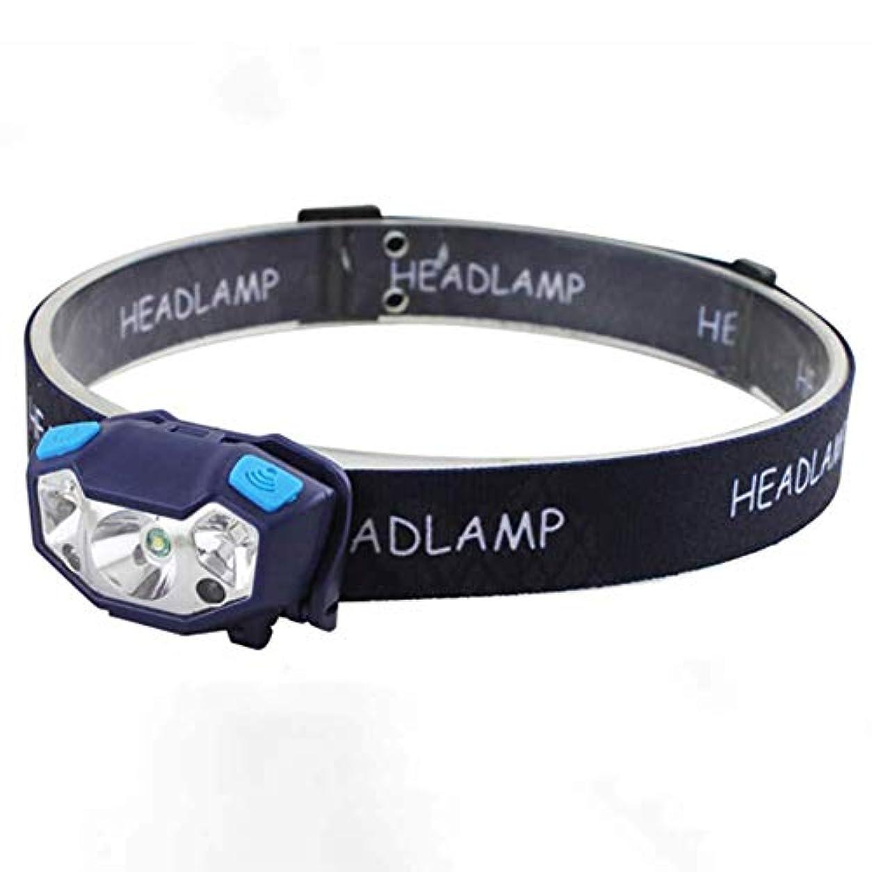 締める物思いにふけるライラックBeesClover ミニUSB充電式LEDヘッドランプ 防水センサー LEDヘッドライトランプ アウトドア キャンプ 懐中電灯