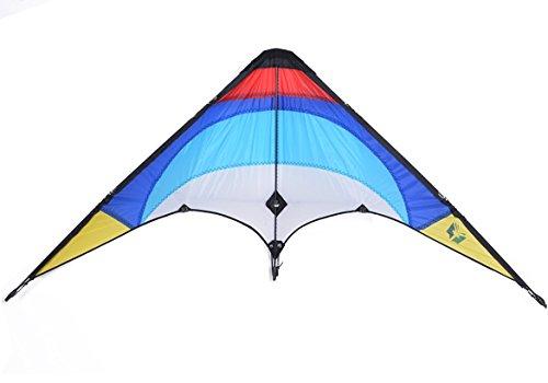 Coocheer 軽量おもしろい鷹凧タコ 子供の楽しいおもちゃ 子供ギフ用凧  微風で揚がる凧 楽しいカイ 糸巻き付き (魚 糸巻き二つ)