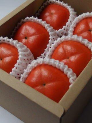 柿しぐれ ( 庄内柿 ) 6玉 樹上脱渋 山形県産 庄内の恵み屋