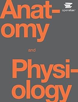 Anatomy and Physiology by [J. Gordon Betts, Peter Desaix, Eddie Johnson, Jody E. Johnson, Oksana Korol, Dean Kruse, Brandon Poe, James A. Wise, Mark Womble, Kelly A. Young]