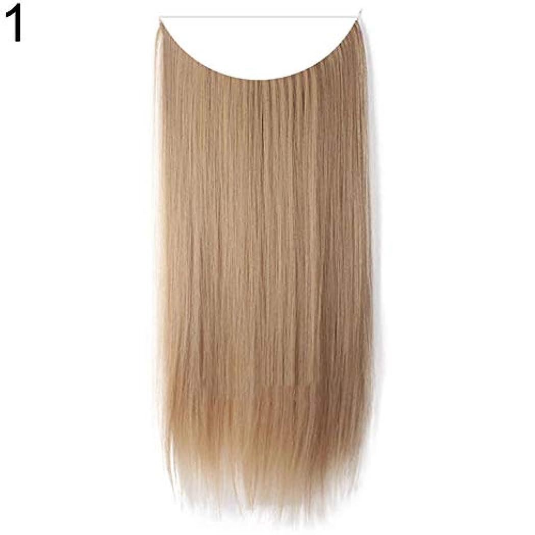 テキストレスリング達成するslQinjiansav女性ウィッグ収納コンテナ22インチ女性ロングストレート/カーリーワイヤーヘッドバンドウィッグ目に見えない髪の延長