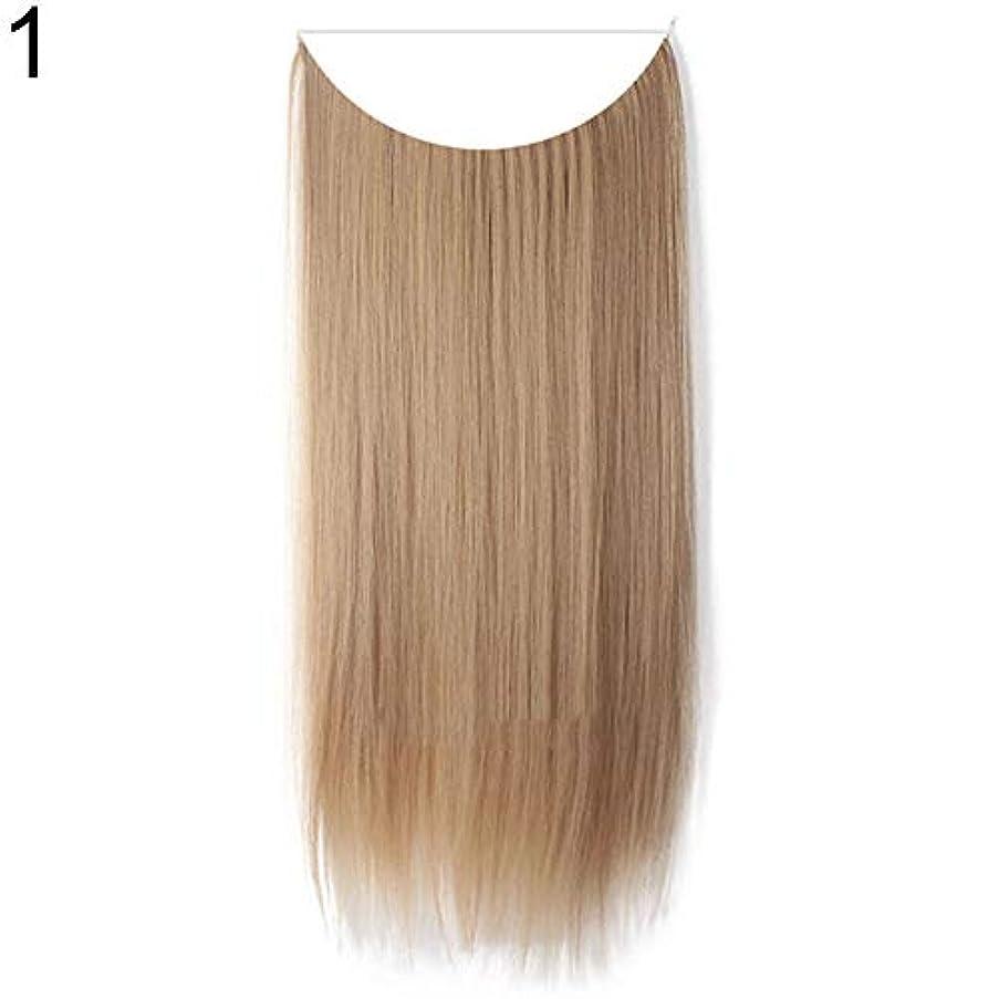 パウダーテンポ保護slQinjiansav女性ウィッグ収納コンテナ22インチ女性ロングストレート/カーリーワイヤーヘッドバンドウィッグ目に見えない髪の延長