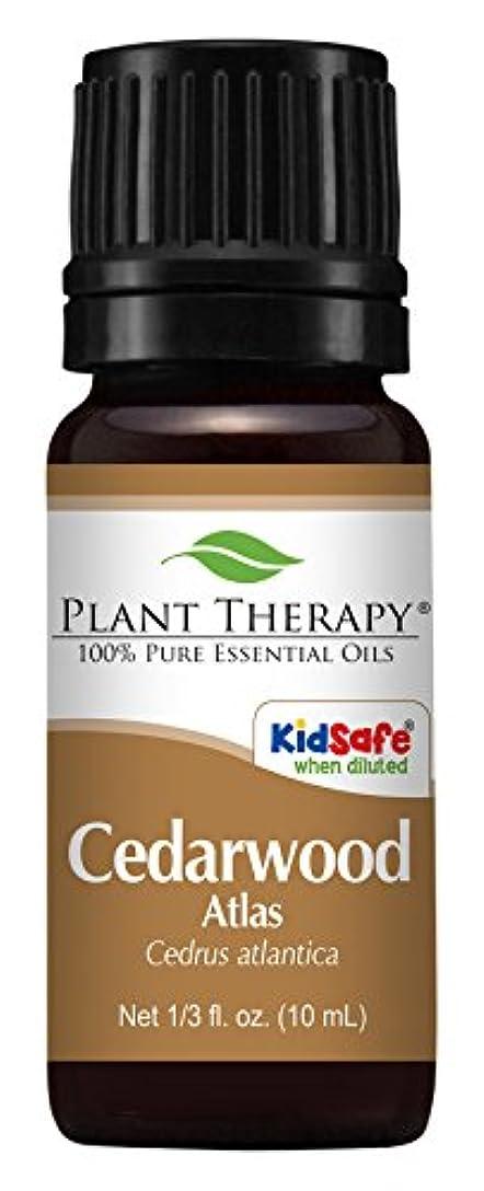 難民窓を洗う一般的なCedarwood Atlas Essential Oil 100% Pure, Undiluted, Therapeutic Grade (10 ml) by Plant Therapy Essential Oils