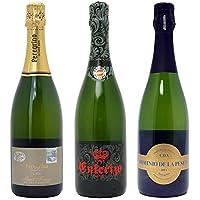 シニアソムリエ厳選 直輸入 スパークリングワイン3本セット((W0AFC8SE))(750mlx3本ワインセット)