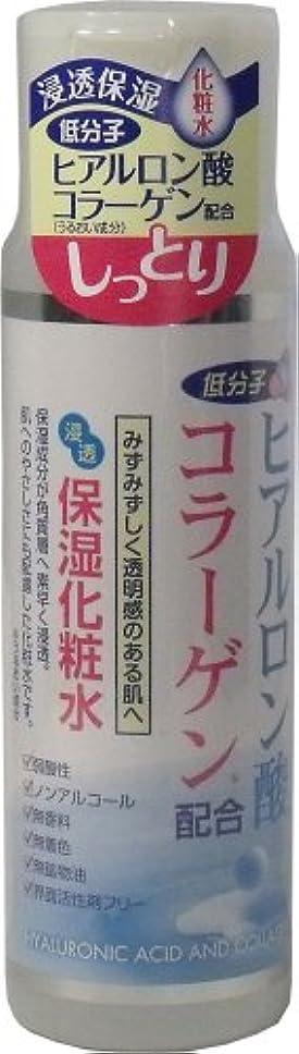 軽く豊富に部分的にヒアルロン酸コラーゲン配合 浸透保湿化粧水