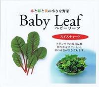 【種子】ベビーリーフ・スイスチャード 1dl