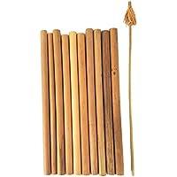 天然素材(再利用可能/生分解性)エコノミーバンブー(竹)ストロー10本+洗浄ブラシセット