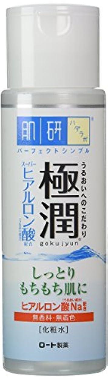 生活侵入団結肌研(ハダラボ) 極潤ヒアルロン液 170 ml