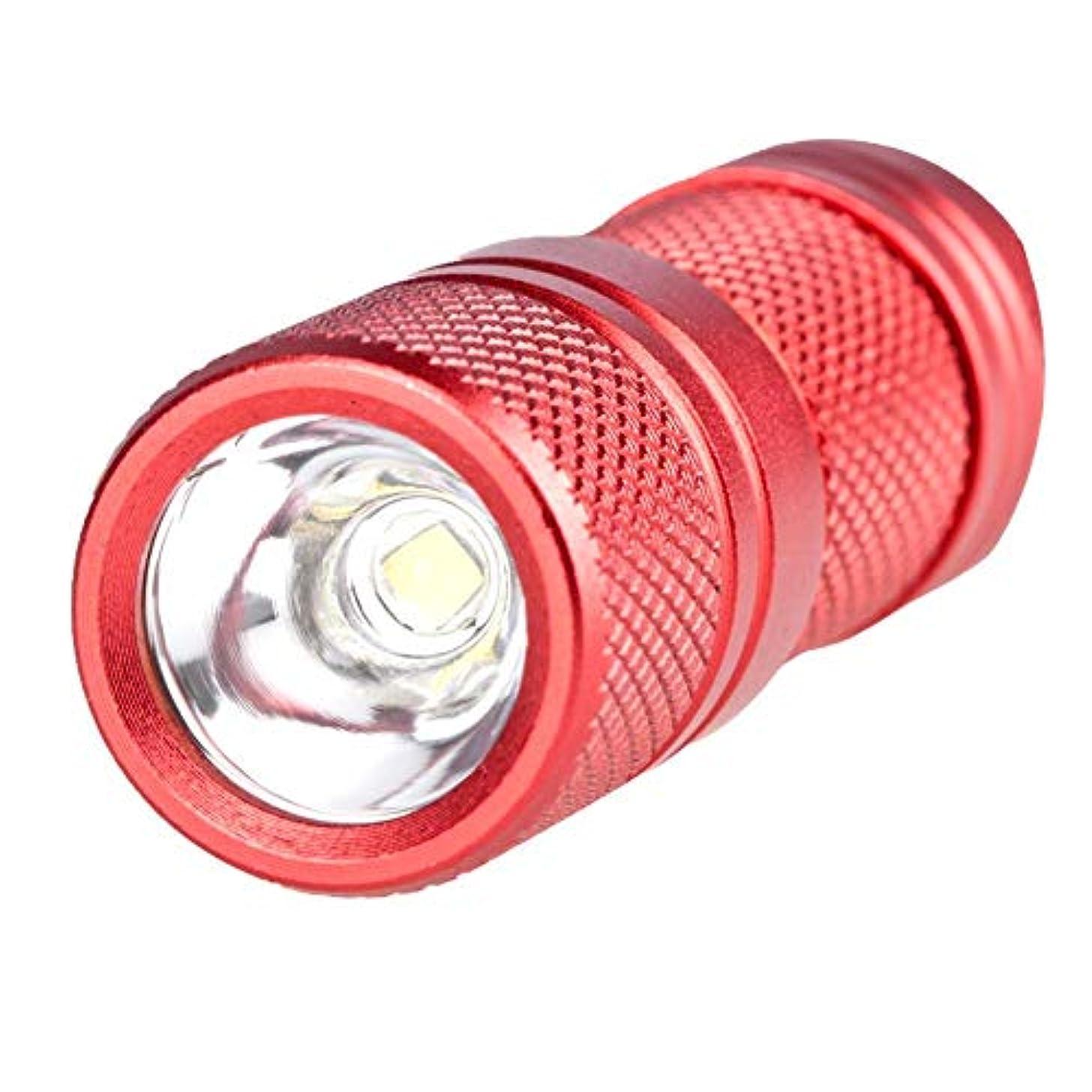 体系的にスカリーレインコートハンディライト 小型軽量ミニ LED懐中電灯 フラッシュライト キーライト キャップランプ テーブルランプ