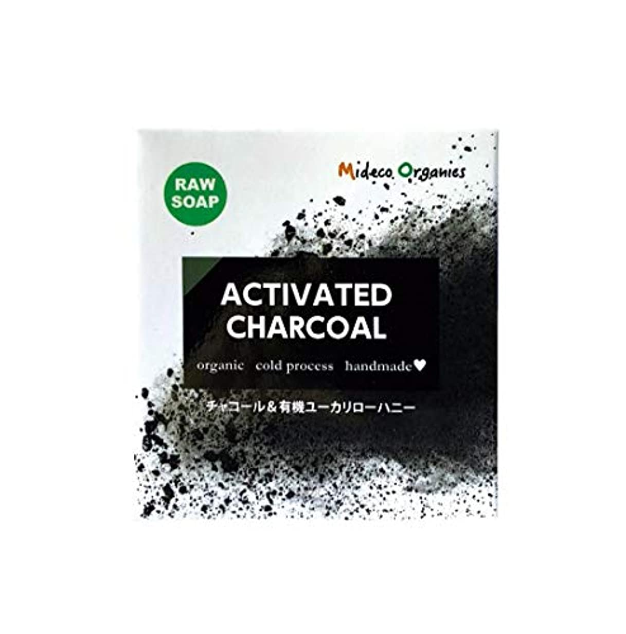 活性化サスティーン継続中炭 & ユーカリはちみつ石鹸