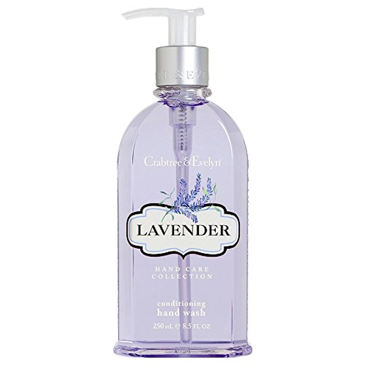 ピッチャー愚かな剃るクラブツリー&イヴリンラベンダーコンディショナーハンドウォッシュ250ミリリットル (Crabtree & Evelyn) (x6) - Crabtree & Evelyn Lavender Conditioning Hand Wash 250ml (Pack of 6) [並行輸入品]