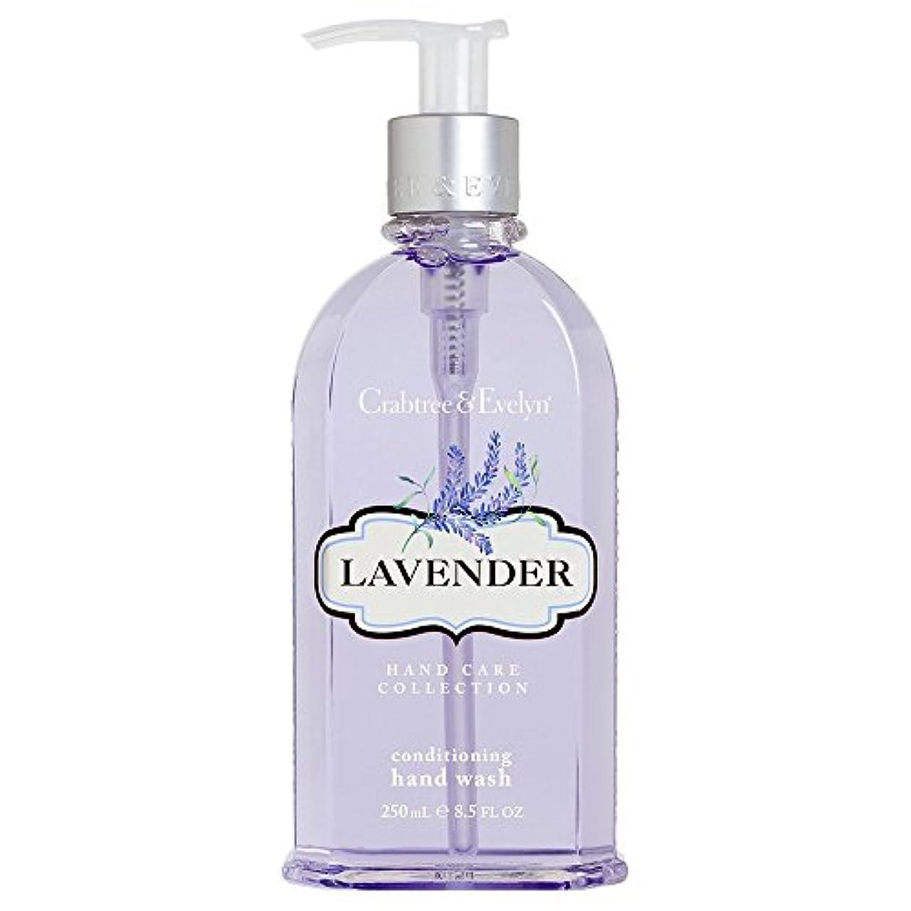 辞書ベックス教育クラブツリー&イヴリンラベンダーコンディショナーハンドウォッシュ250ミリリットル (Crabtree & Evelyn) (x6) - Crabtree & Evelyn Lavender Conditioning Hand Wash 250ml (Pack of 6) [並行輸入品]
