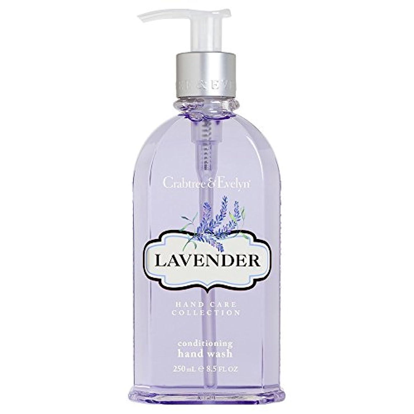 一瞬フィールド地質学クラブツリー&イヴリンラベンダーコンディショナーハンドウォッシュ250ミリリットル (Crabtree & Evelyn) - Crabtree & Evelyn Lavender Conditioning Hand Wash...
