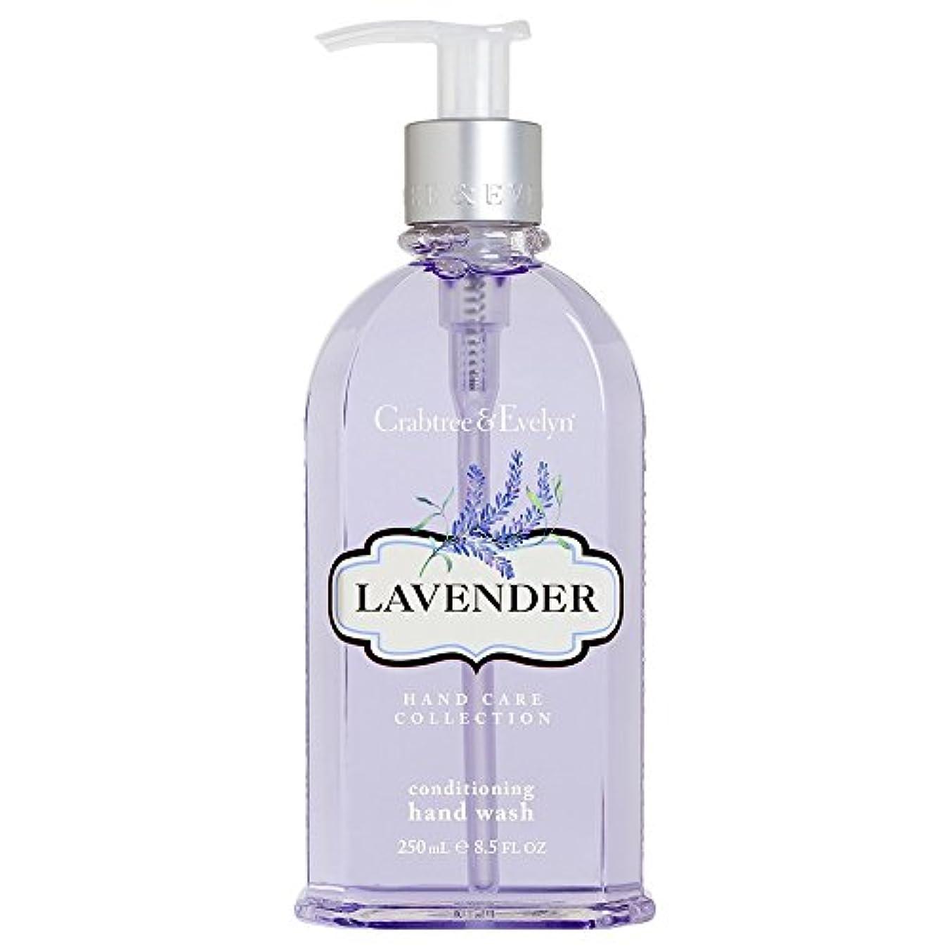 事業内容廃止するリフトクラブツリー&イヴリンラベンダーコンディショナーハンドウォッシュ250ミリリットル (Crabtree & Evelyn) (x2) - Crabtree & Evelyn Lavender Conditioning Hand Wash 250ml (Pack of 2) [並行輸入品]
