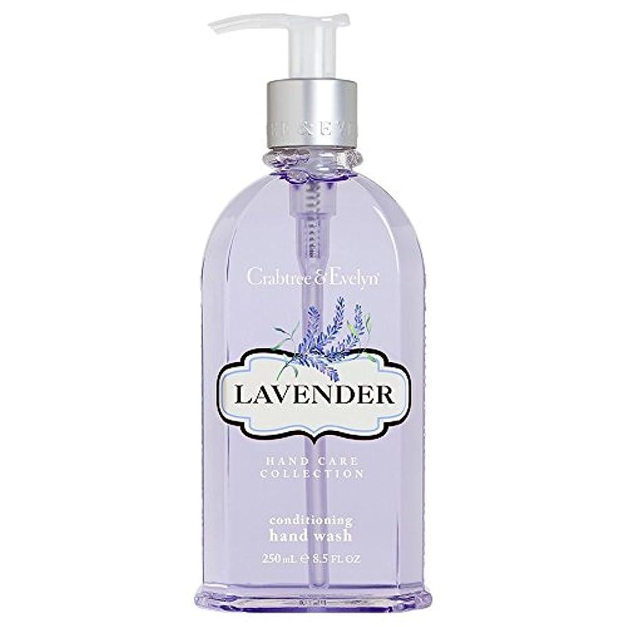 病弱私たちの意気揚々クラブツリー&イヴリンラベンダーコンディショナーハンドウォッシュ250ミリリットル (Crabtree & Evelyn) (x6) - Crabtree & Evelyn Lavender Conditioning Hand Wash 250ml (Pack of 6) [並行輸入品]