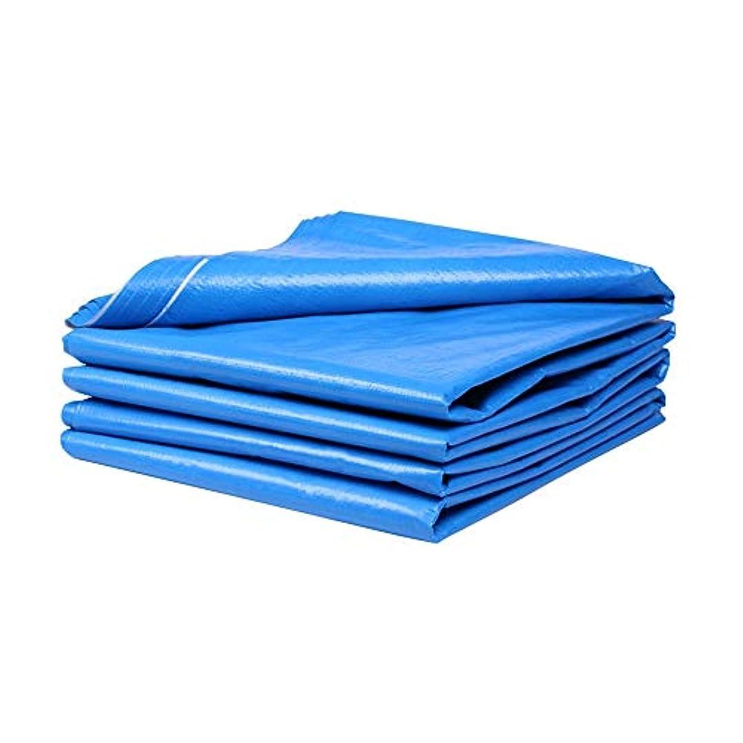 規則性文房具カストディアンGXYAWPJ 防水ターポリン、屋外青と白の防塵カバーターポリン、ターポリン絶縁シェードクロスプラスチッククロス、140g /M² (Size : 6×6m)