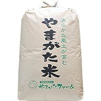 ★玄米★ 平成29年山形県産 はえぬき 一等米 30㎏