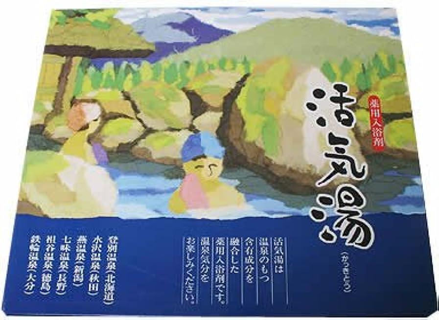 パートナーリズム卒業記念アルバム薬用入浴剤 活気湯 30包入り
