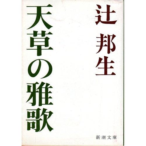 天草の雅歌 (新潮文庫 草 68F)の詳細を見る