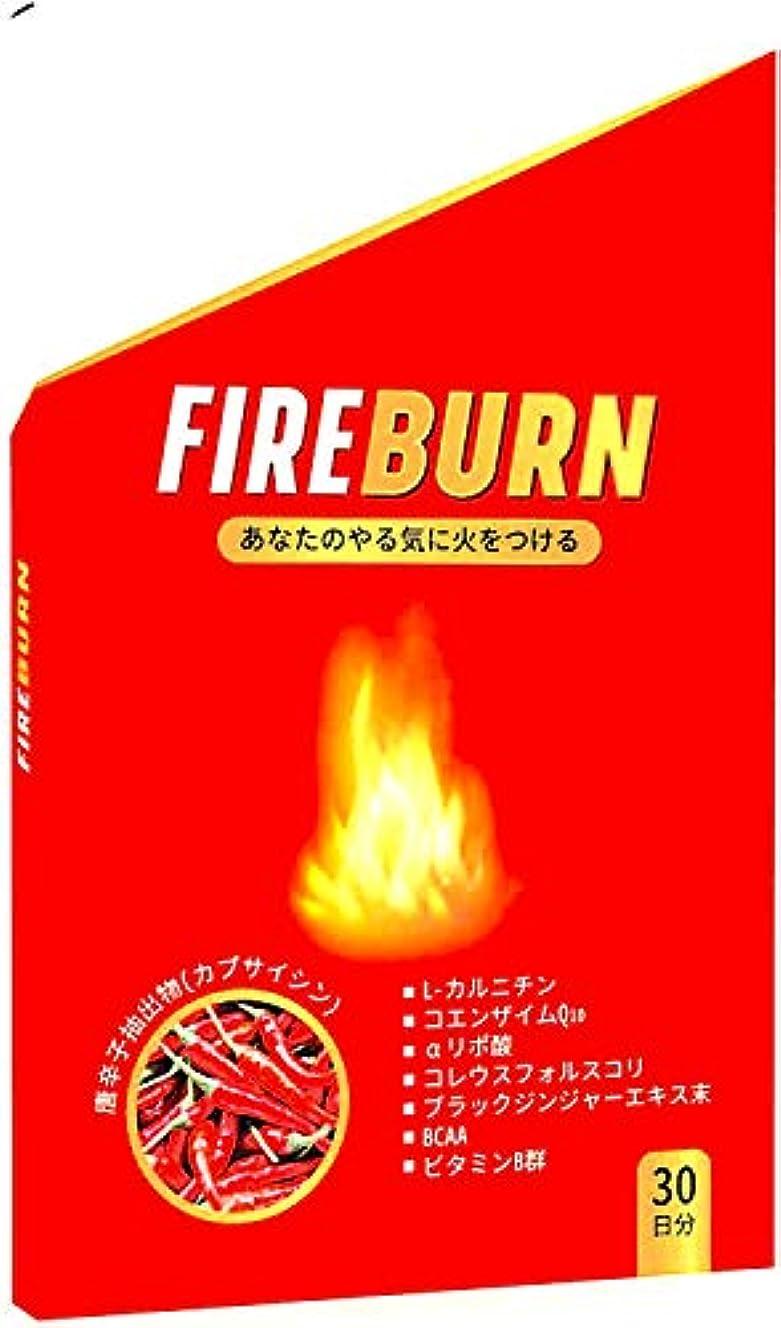 夢中石膏白い【FIRE BURN】 ダイエットサプリ 燃焼系 α-リポ酸 L-カルニチン 厳選素材 30日分