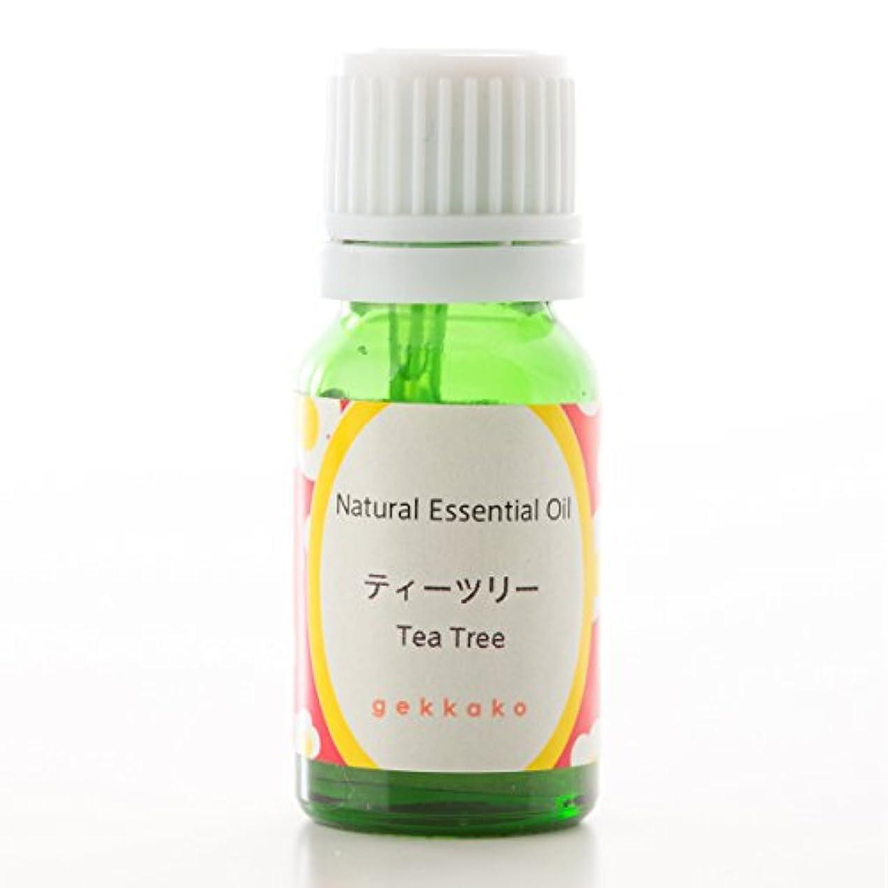 吸収剤カウンタボトル<月下香>エッセンシャルオイル/アロマ/ティーツリー【5ml】