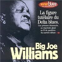 Les Incontournables by Big Joe Williams