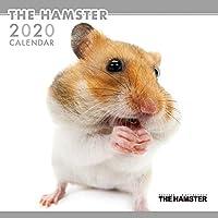 THE HAMSTER カレンダー 2020年カレンダー CL-1140