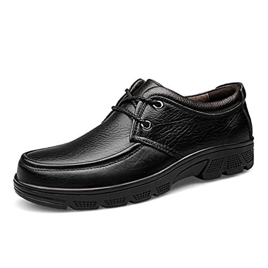 モロニック電気技師オーバーヘッドHAIBON 高品質革靴 绅士鞋 メンズレザーシューズ ビジネスシューズ 24cm-29cm 通勤