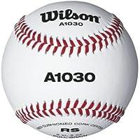 公式High School Practice /ユースリーグRaised Seam Baseballsからウィルソン – ケースof 10ダース