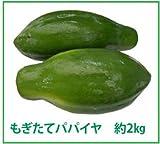 たっぷりのパパイン酵素でダイエット!沖縄産「青パパイヤ」(約2kg)販売開始!