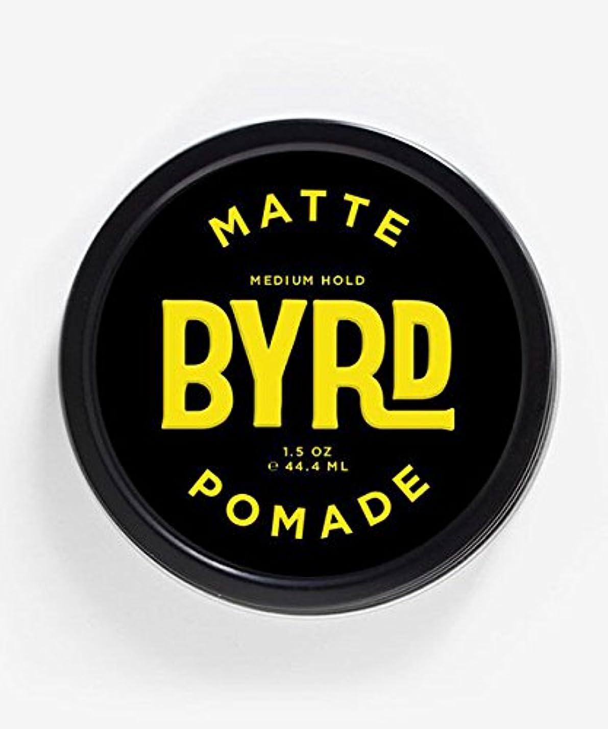 耐える説得力のある色合いBYRD(バード) マットポマード 42g