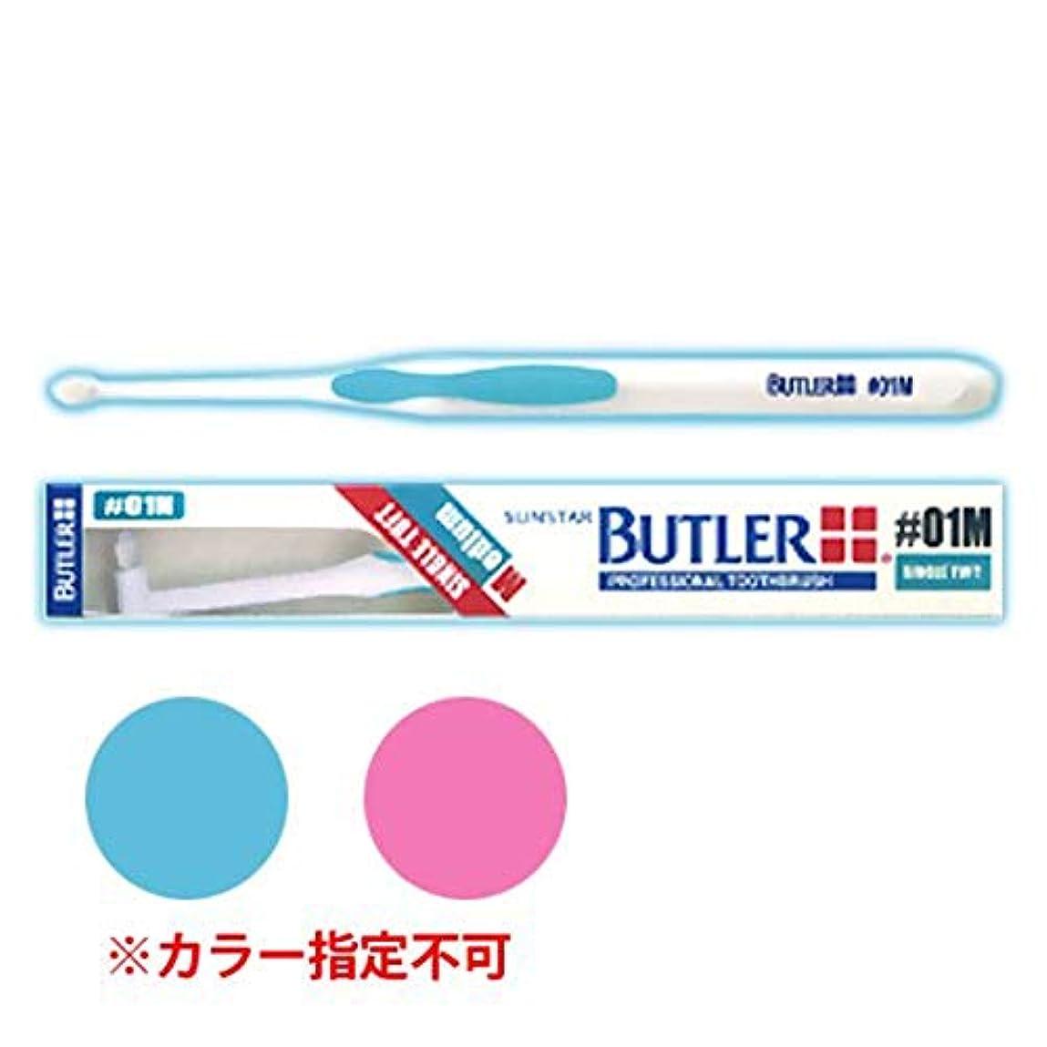幻影炭水化物肌寒いサンスター バトラー シングルタフト #01M(ミディアムタイプ) 6本